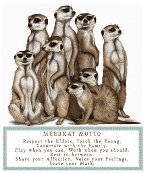 Meerkat Motto: Respect the Elders, Teach the Young, Cooperate with the Family, Play when you can, Work when you should, Rest in between.  Share your Affection, Voice your Feelings, Leave your Mark.